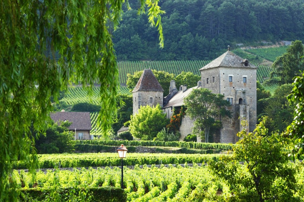 Burgundy Tours From Paris