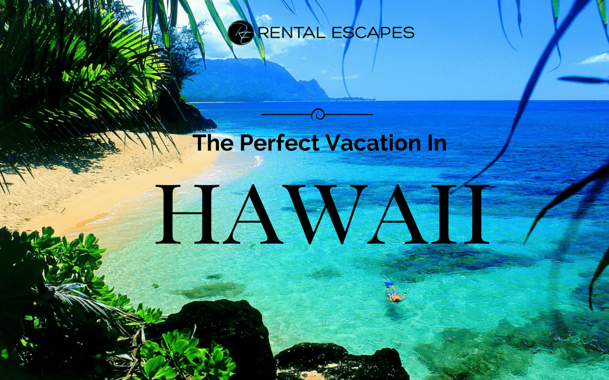 the perfect vacation spot essay