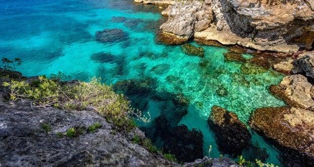 blue water jamaica