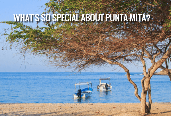 What's so Special about Punta Mita?