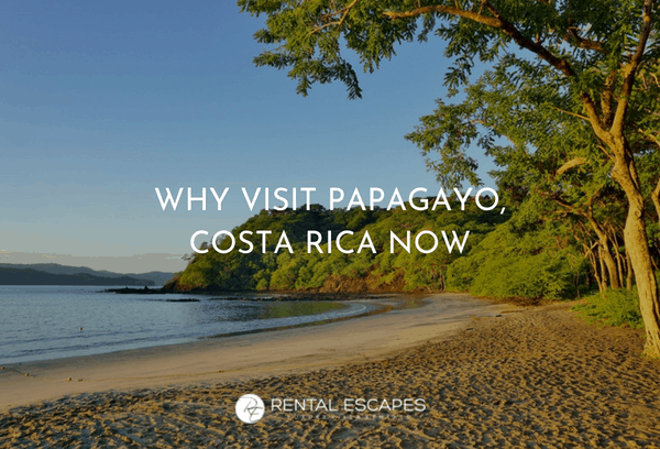 Why Now's The Best Time To Visit Papagayo Costa Rica