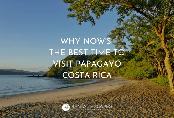 Why Now's The Best Time To Visit Papagayo Costa Rica  Rental Escapes
