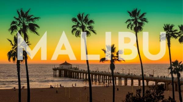 Palm trees at sunset at the Malibu Pier