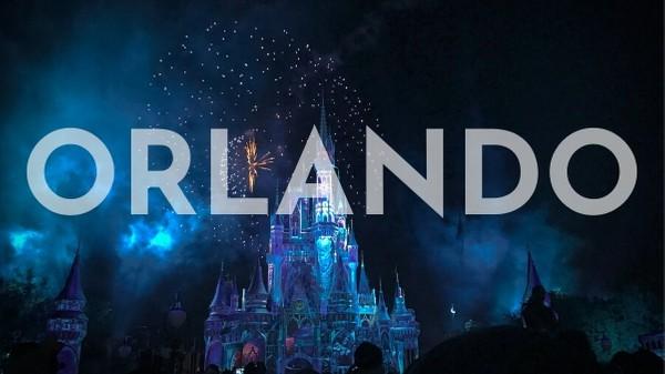 Fireworks at Disney World in Orlando