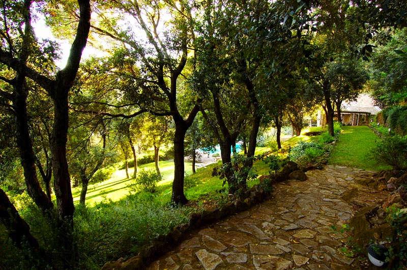 Luxury vacation rentals europe - Italy - Tuscany - Grosseto - Villa le Agavi - Image 1/25