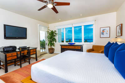 Master Bedroom Suite with large flat panel HD