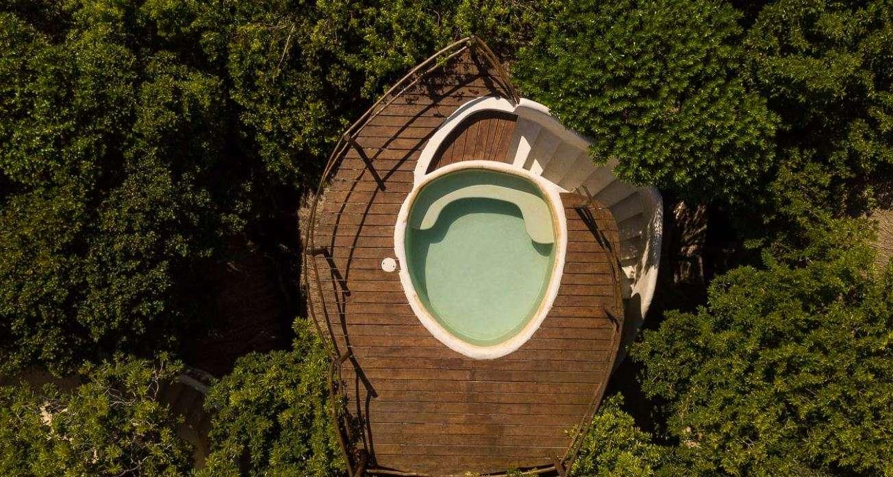 - Jungle Casita Ocean View Pool - Image 1/5