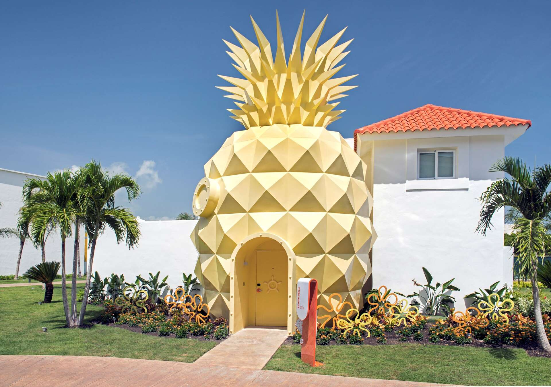 - The Pineapple - Image 1/26
