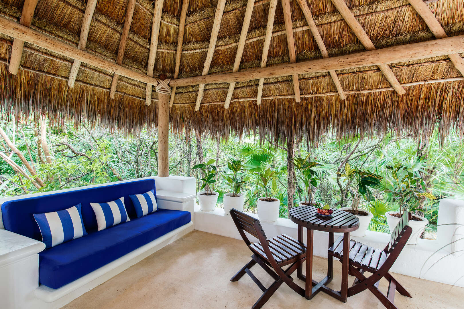 - Jungle Suite with Plunge Pool - Image 1/49